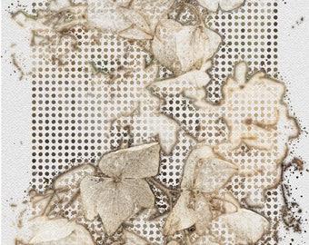 Lattice Hydrangea