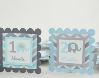 First Birthday Decoration, 1st Year Decoration, Elephant 12 Month Photo Banner, First Year Photo Banner, Light blue and Gray , c-1238