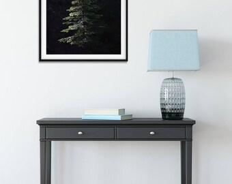 Pine Tree Wall Art, Grand Fir Tree, Evergreen Trees Wall Print, Ray of Light, Forest Wall Decor, Oregon Forest Art Print, Pine Forest Print