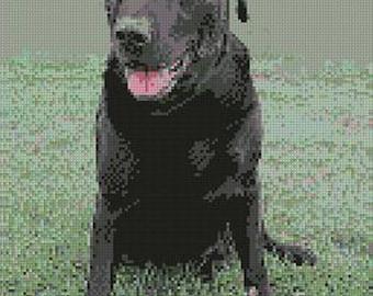Black Labrador Counted Cross Stitch Kit