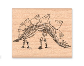 DINOSAUR STEGOSAURUS Rubber Stamp~Skeleton Stamp~Paleontologist~Two size options~large or small~wood block mounted stamp (39-08L) (32-13S)