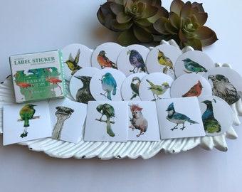 Sticker Set birds 40 pcs