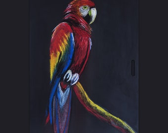 Brazilian Nature • Scarlet Macaw Bird