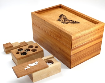 Insect Pinning Kit (Swallowtail)