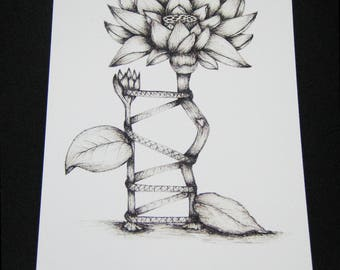 Lotus (Ortho Tree) pen & ink Print