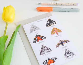 British Moths Card - Moth Greetings Card - Moth Card - Moth Wall Art - Moth Illustration - A6 Art Print - British Nature Card - UK Wildlife