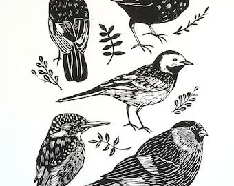British Birds Screen Print