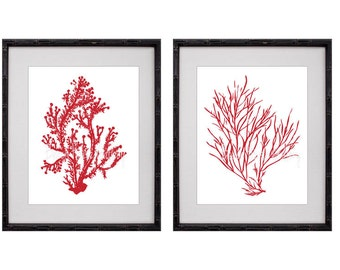 Red Coral Wall Art, Red Coral Print, Red White Wall Art, Red Home Decor,  Red Coral Print, Set of Two Prints, 8x10, Custom Colors