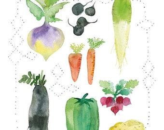 Garden vegetables Poster, Watercolor vegetable, Veggie art, Vegetable print, Veggie watercolor art, Vegetable art, Kitchen decor, Food art