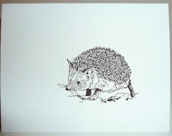 Little Hedgehog letterpress card