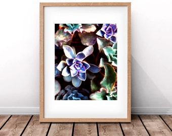Succulant Plant Print,Fat Plant,Botanical Print,Instant Download,Plant Prints,Home Decor,Wall Art,Botanical Art,Greenery