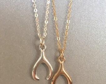 Necklace lucky Wishbone