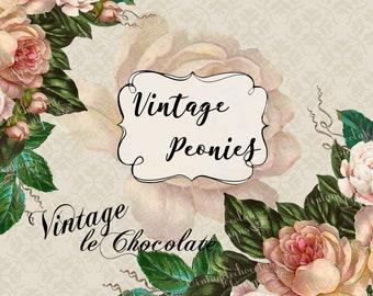 Vintage Clip-art Peony Clip-art Graphic Victorian Print Digital Clip-art Wedding Ideas. No. E42