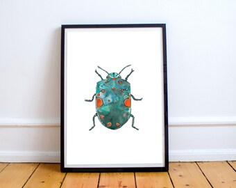 PACHYCORIS TORRIDUS: Watercolour Art Print Limited Edition of 30, green bug, watercolour illustration