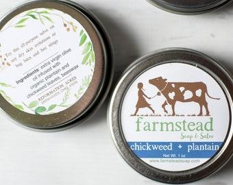 Chickweed Plantain Salve // All-Purpose Skin Balm, Herbal Salve, Wildcrafted Salve