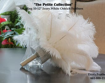 "USA Store Limited Time! 1 to 100 Ostrich Feathers ""The Petite Collection""  Ivory White 10 to 12 inches, Samba Costumes, Mardi Gras, Carnival"