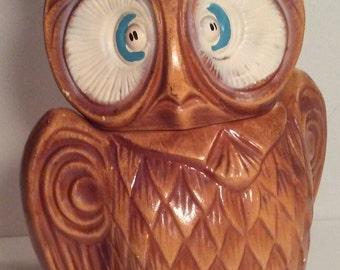 Cross Eyed Owl