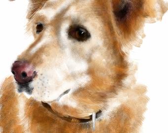 Custom Dog Portrait, custom pet portrait, pet portrait, dog portrait, dog lover, dog art, dog memorial, golden retriever, dog, art print