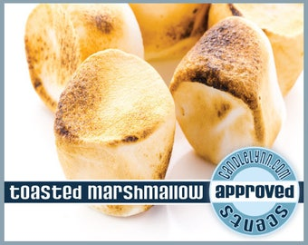 TOASTED MARSHMALLOW Clam Shell Package - Tarts - Break Apart Melts