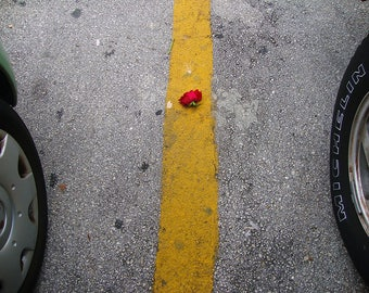 Photography - St.-image of art, street photography. Fine arts. Color.