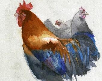 Chicken gang..