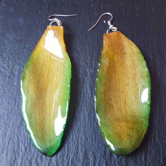 real orchid Cattleya Long petal earrings in green and yellow