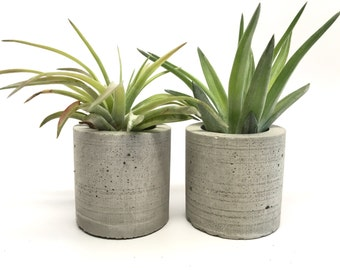 Set of 2 - Small Cylindrical Concrete Planter - Air Plant Holder - Party and Wedding Favors