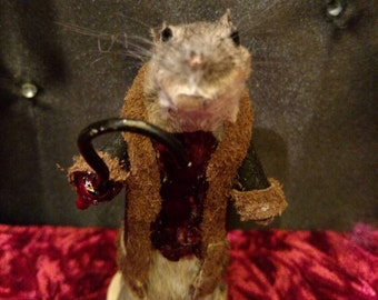 Candymouse taxidermy Mouse
