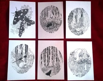 Death and Nature | Postcard Pack | A6 | Gift | Art |