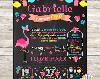 1st Birthday Chalkboard, Birthday Stats Photo Prop, Personalized Poster, Flamingo Birthday, Aloha Birthday, Hibiscus, Summer Soiree