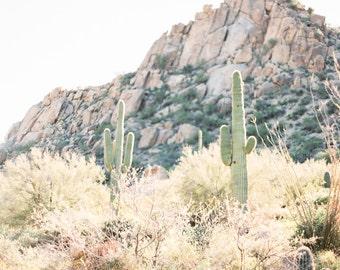 Saguaro cactus print, cactus fine art print, desert photo print, Arizona print, Southwestern decor