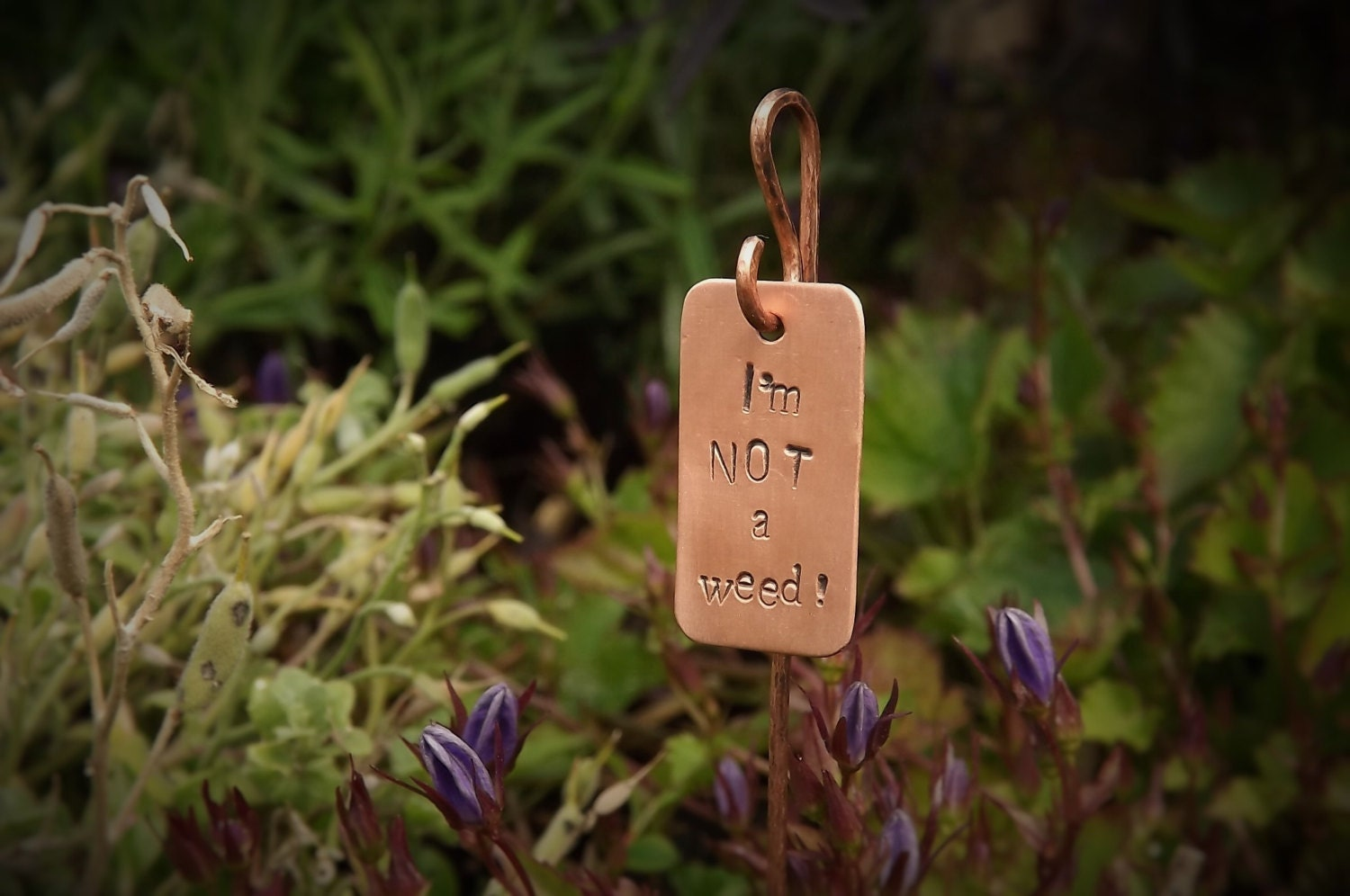 Set of 3 Garden Plant Tags Plant Tags Plant Labels Garden