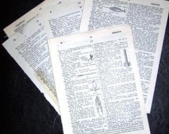 vintage paper ... DICTIONARY 65 PAGES the MMMss NNNsss and OOOOsss ...