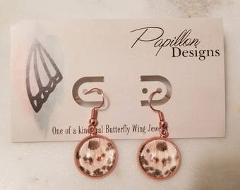 Rode gold tone real butterfly wing earrings