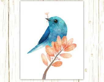 Mountain Bluebird Print -- bird art -- colorful bird art by stephanie fizer coleman illustration
