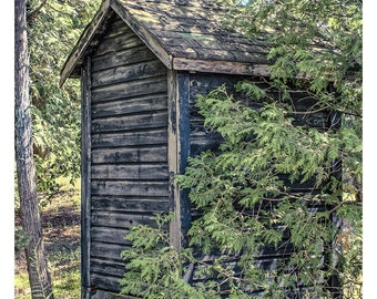 Abandoned Outhouse - Art & collectible photo Giclee prints for home decor or gift suggestion for any occasion.