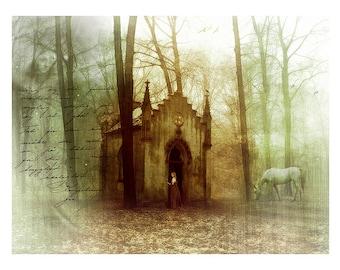 Woodland Fantasy Art Print Secret Places