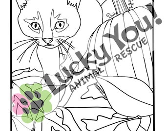 Cat Coloring Page, Printable Coloring Book Pages, Animal Rescue Charity, Pets, Gifts for Her, Meow, Kitty, Fundraiser, Furbabies, Print