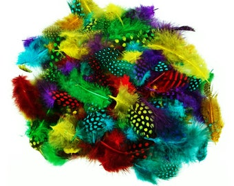 Spotted Feathers Assorted Colours 7g approx