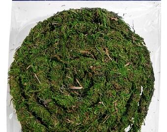 Moss Vine Garland wired-6 or 12 foot roll-Baskets-Wreaths-Terrariums-Vivariums-Weddings-Fairy Trees and vines-Dart ...