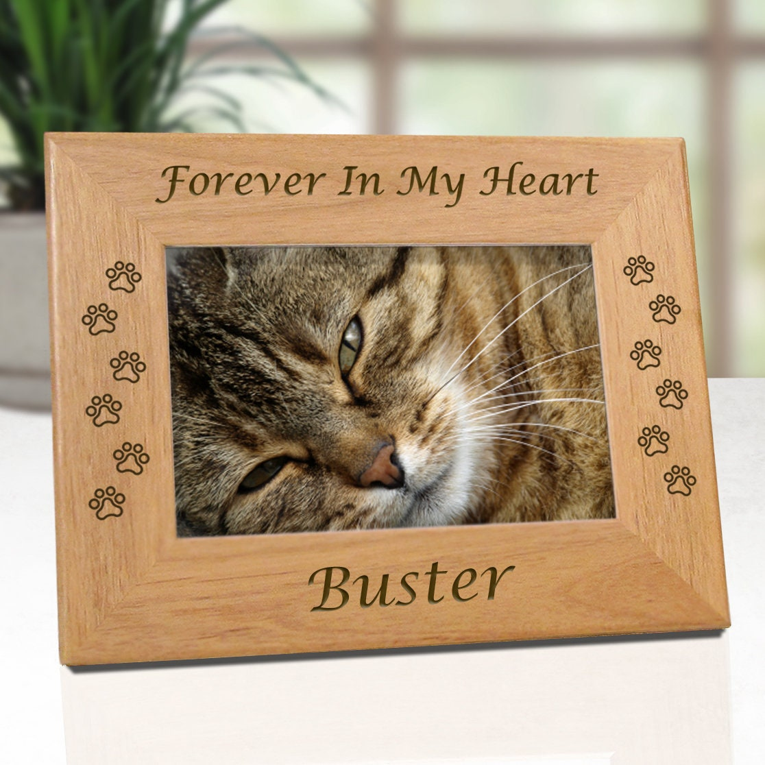 Cat picture frame rescued pet donation forever in my heart zoom jeuxipadfo Image collections