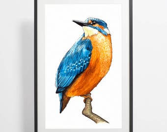 Watercolor KingFisher Painting Print – kingfisher art, kingfisher watercolor, kingfisher illustration, bird illustration, kingfisher poster