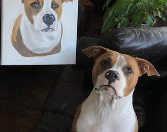 Custom Pet Portraits 30cmX24cm