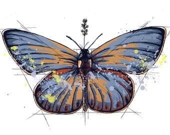 Butterfly Wall Art Screenprint