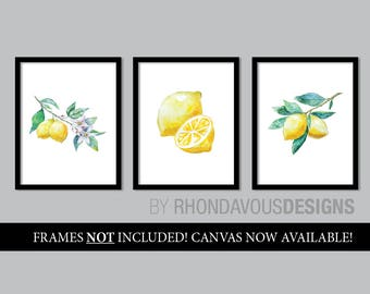 Watercolor Lemon Art Prints. French Country Decor. Farmhouse Decor. Farmhouse Wall Decor. Kitchen Art Prints. Dining Room Wall Art. NS-878