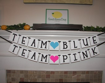 Team BLUE Team PINK Banner - Gender Reveal Party - Baby Decoration - Shower Decoration - Photo Prop