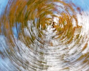 FishEye II - fall abstraction series