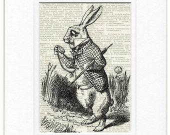 Rabbit Alice in Wonderland print