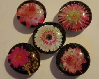 Set of 5 Strong Glass magnets, refrigerator magnets, fridge art, kitchen decor, Flower, fractal Magnets, flowers, nature, black, pink