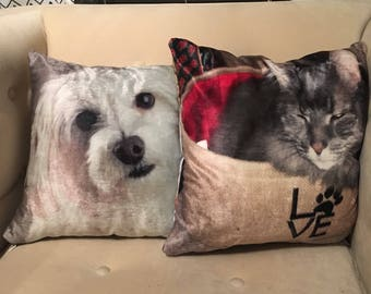 Made to order creature comfort cushions.